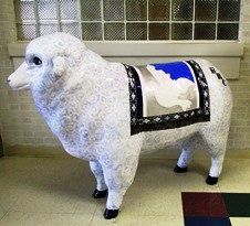 Baaptist Sheep