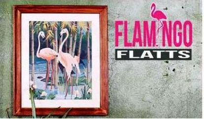 Flamingo Flatts